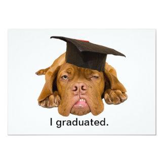 perro con el gorra de la graduación invitación 12,7 x 17,8 cm