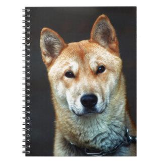 perro cuaderno