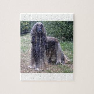 Perro de afgano puzzle