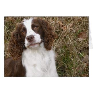 Perro de aguas de saltador inglés - el mejor amigo tarjeta de felicitación