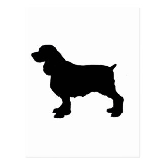 Perro de aguas de saltador inglés Silhoutee, Postal