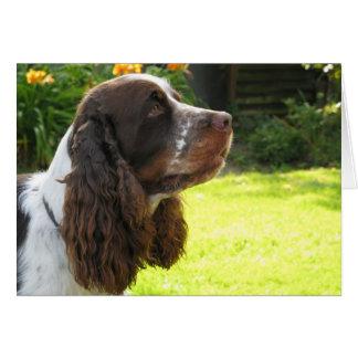 Perro de aguas de saltador inglés tarjeta
