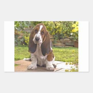 Perro de Basset Hound Pegatina Rectangular