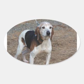 Perro de Billy Pegatina Ovalada