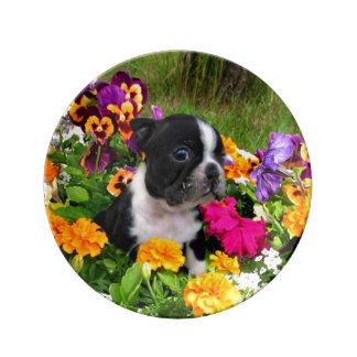 Perro de Boston Terrier Platos De Cerámica