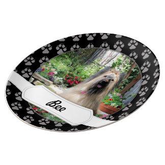 Perro de Briard en jardín de flores Plato De Cerámica