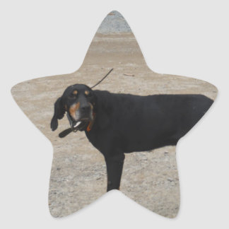 Perro de caza cansado pegatinas forma de estrellaes