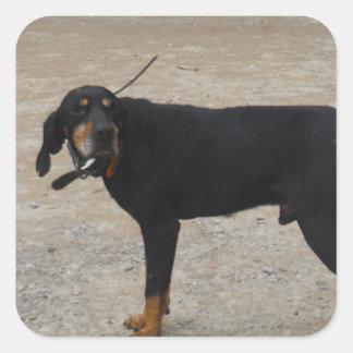 Perro de caza cansado pegatina cuadrada