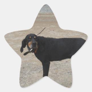 Perro de caza cansado pegatina en forma de estrella