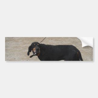 Perro de caza cansado etiqueta de parachoque