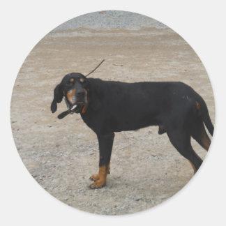 Perro de caza cansado pegatina redonda