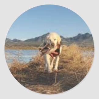 Perro de caza pegatina redonda