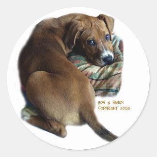 Perro de caza triste pegatina redonda