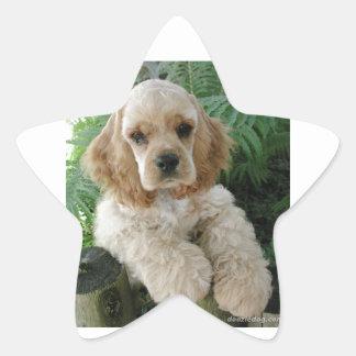 Perro de cocker spaniel del americano y el helecho pegatina en forma de estrella