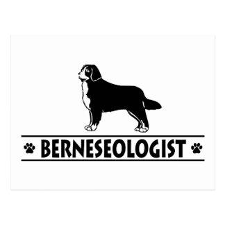 Perro de montaña de Bernese chistoso Postal
