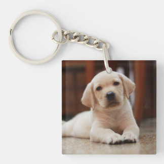 Perro de perrito amarillo de Labrador del bebé que Llavero Cuadrado Acrílico A Doble Cara
