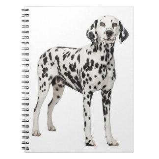 Perro de perrito dálmata del amor - perro manchado cuaderno