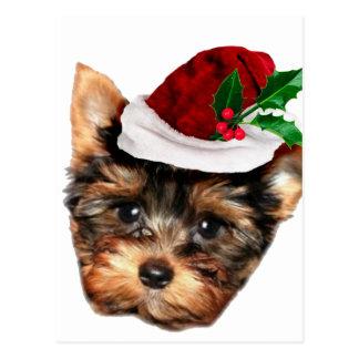 Perro de perrito de Chrismtas Yorkshire Terrier Postal