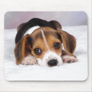 Perro de perrito del beagle alfombrilla de ratón