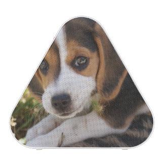 Perro de perrito del beagle altavoz