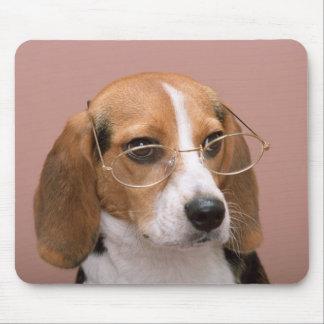 Perro de perrito del beagle del amor Mousepad Alfombrilla De Ratón