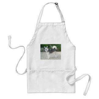 Perro de perrito del Malamute de Alaska Delantal