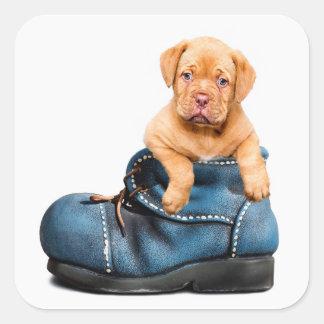 Perro de perrito lindo en un pegatina de la bota