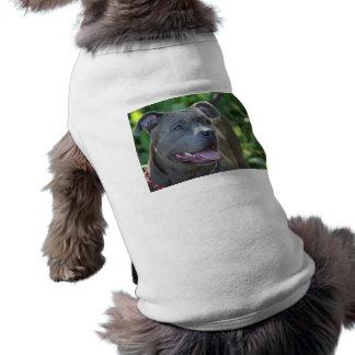Perro de Pitbull Camisa De Mascota