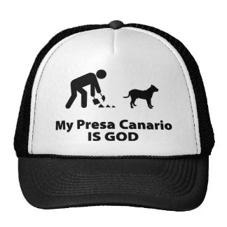 Perro de Presa Canario Gorro