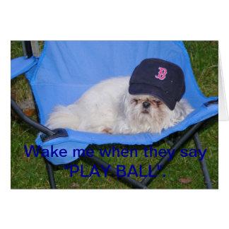 Perro de Red Sox Tarjeton