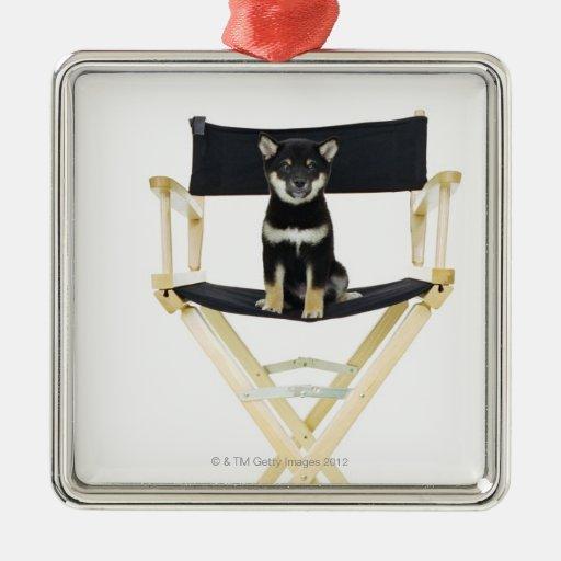 Perro de Shiba Inu en la silla del director Adorno De Reyes