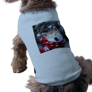 Perro de Shiba - perro del dux - Felices Navidad