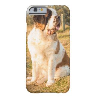 Perro de St Bernard Funda Barely There iPhone 6