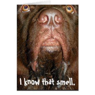 Perro de Terranova del ~ de la tarjeta de