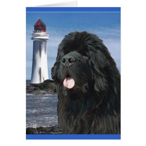 Perro de Terranova del puente del arco iris Tarjetas