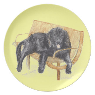 Perro de Terranova en banco, Plato