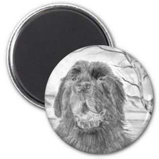 Perro de Terranova Imán Para Frigorífico