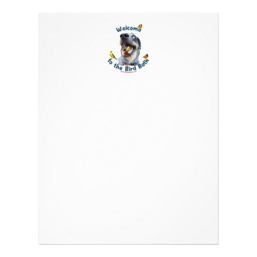 Perro del baño del pájaro flyer personalizado