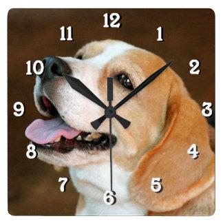 Perro del beagle reloj cuadrado