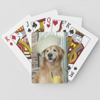 Perro del golden retriever en verano del gorra de baraja de cartas