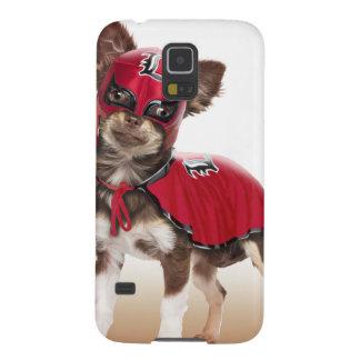 Perro del libre de Lucha, chihuahua divertida, Funda Galaxy S5