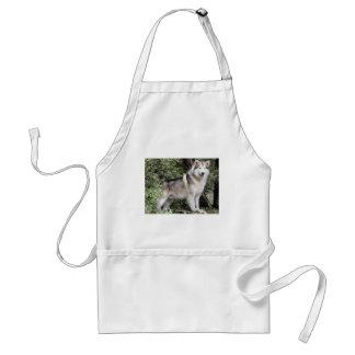 Perro del Malamute de Alaska Delantal