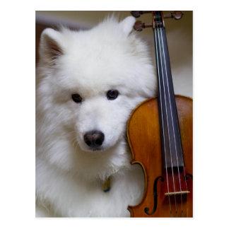 Perro del samoyedo con la postal del violín
