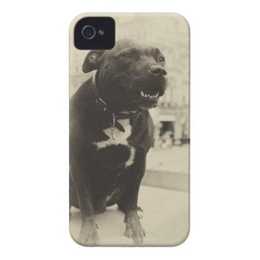 Perro del vintage iPhone 4 Case-Mate cárcasas