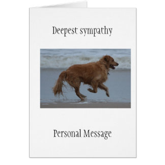 Perro difunto en golden retriever cariñoso de la tarjeta pequeña