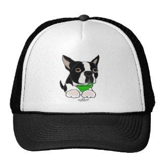 Perro divertido de Boston Terrier que bebe a Gorra