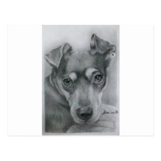 Perro dulce postal