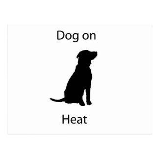 Perro en calor postales