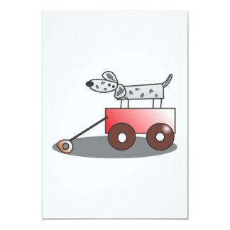 Perro en carro comunicados