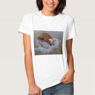 perro en el hielo, presa soy caliente camisetas
